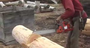 Corner Notch — Cutting and Brushing — For Log Cabin Construction