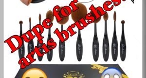 dupe for artis brush set????