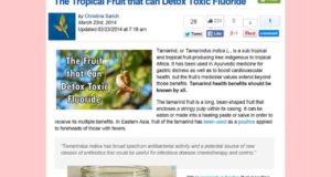 Tropical Fruit that can Detox Toxic Fluoride